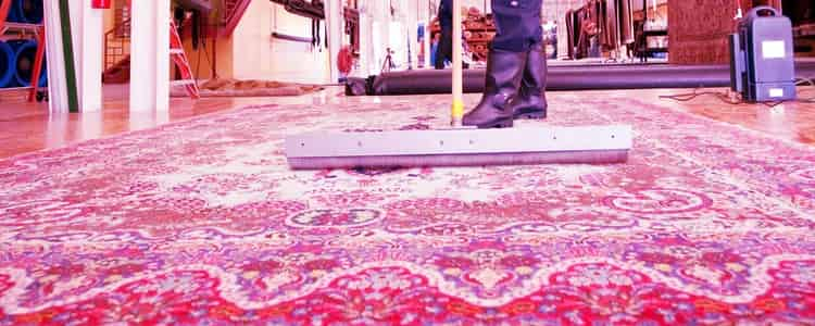 Best Rug Cleaning Mornington