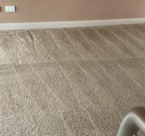 Carpet Cleaning Services In Mornington